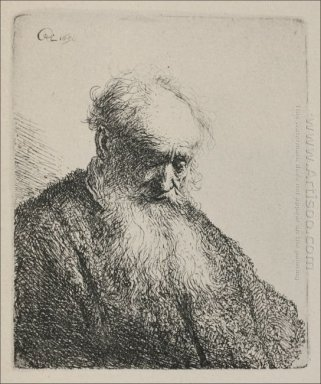 An Old Man With A Beard 1630
