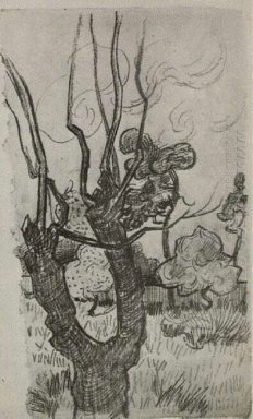 A Bare Treetop In The Garden Of The Asylum 1889
