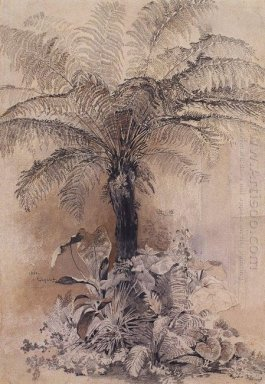 tropical plants 1854