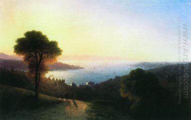 View Of The Bosporus 1874