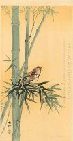 Sparrows on bamboo tree