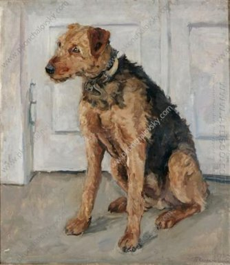 Airedale 1935