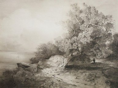 old oak tree at the cliff above the river 1857