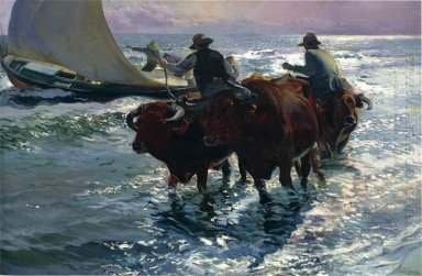 Bulls In The Sea 1903