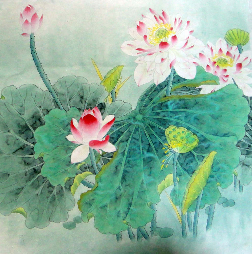 Chinese painting lotus chinese painting cnag234411 artisoo izmirmasajfo