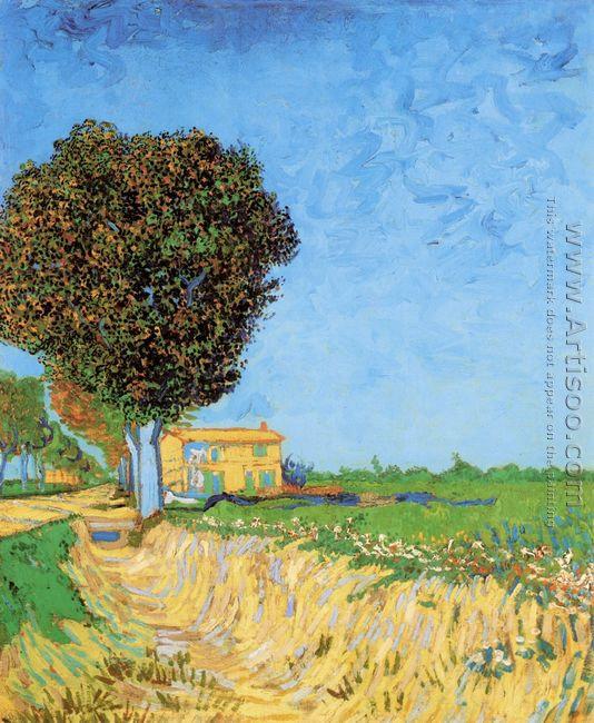 Lane Near Arles A