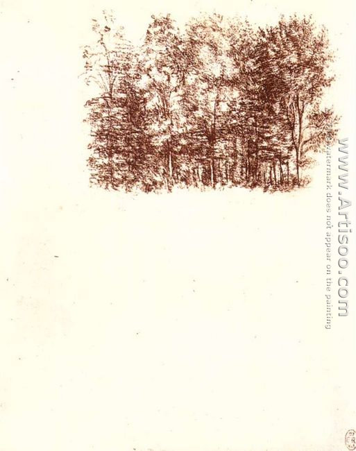 Birch copse c. 1500