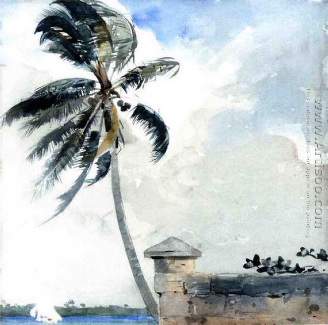 A Tropical Breeze, Nassau