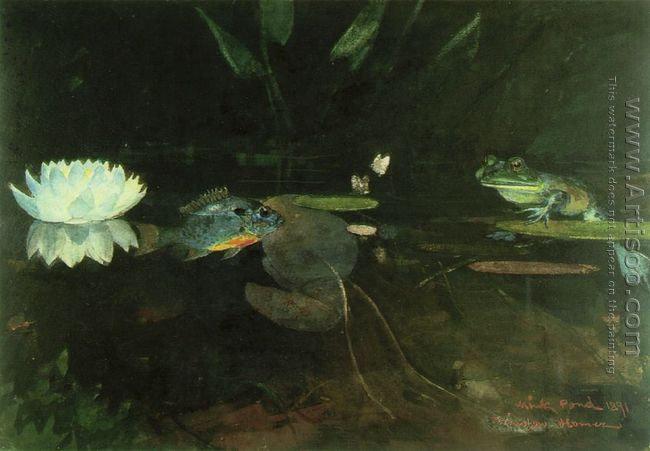 Mink Pond