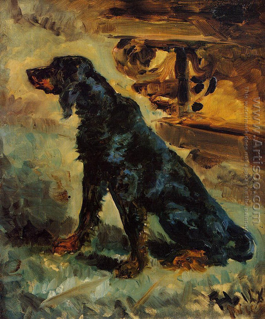 Dun, a Gordon Setter Belonging to Comte Alphonse de Toulouse-La