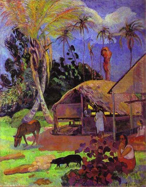 black pigs 1891