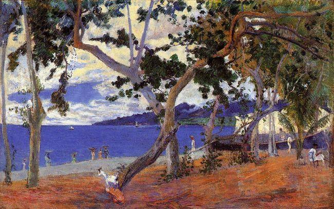 coastal landscape from martinique 1887