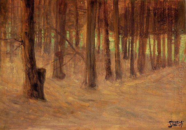 forest with sunlit clearing in the background 1907