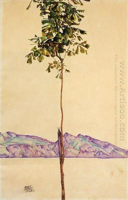little tree chestnut tree at lake constance 1912