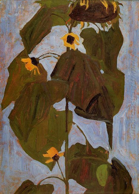 sunflower 1908