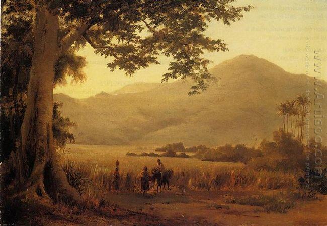 antilian landscape st thomas 1856