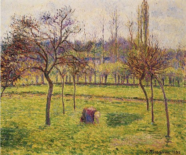 apple trees in a field 1892