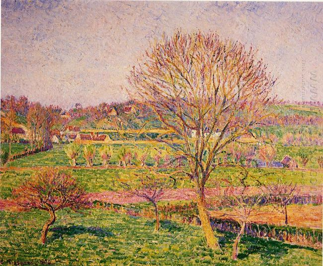 big walnut tree at eragny 1892