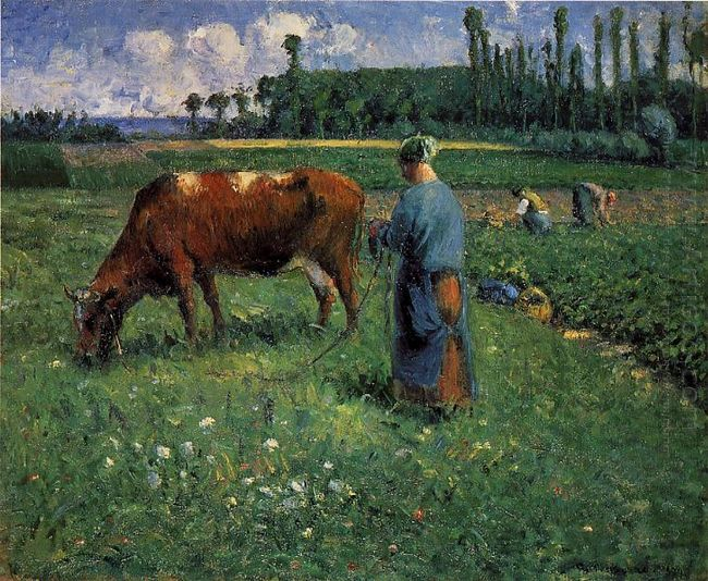 girl tending a cow in pasture 1874