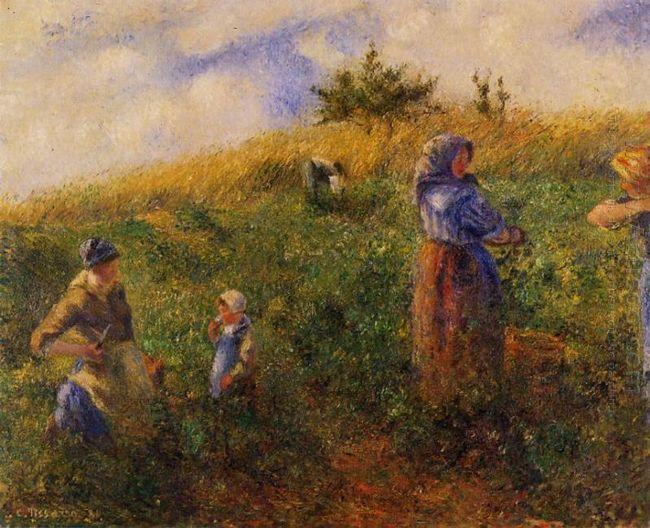 picking peas 1880