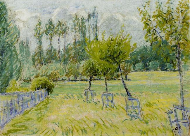 study of apple trees at eragny