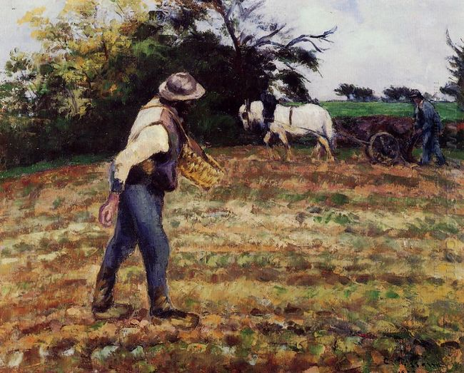 the sower montfoucault 1875