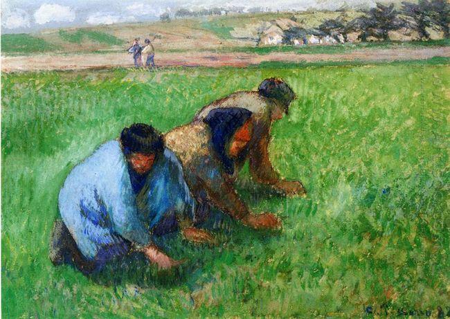 weeders 1882