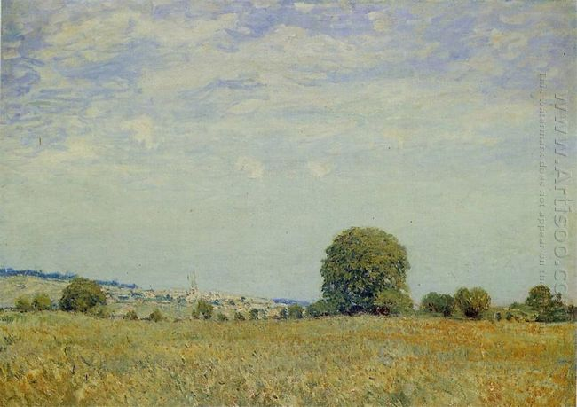 fields at saint cloud