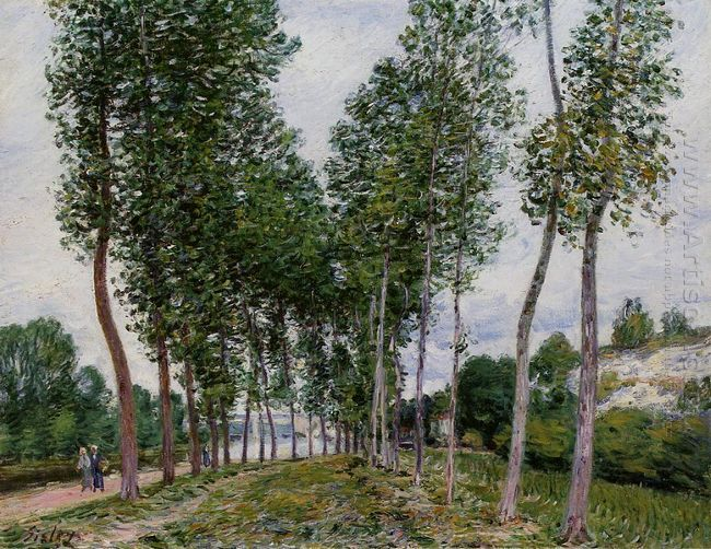lane of poplars on the banks of the loing 1892