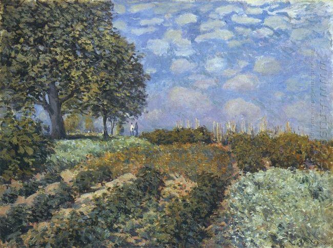the fields 1874