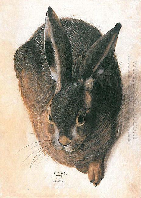 hare 1528 1