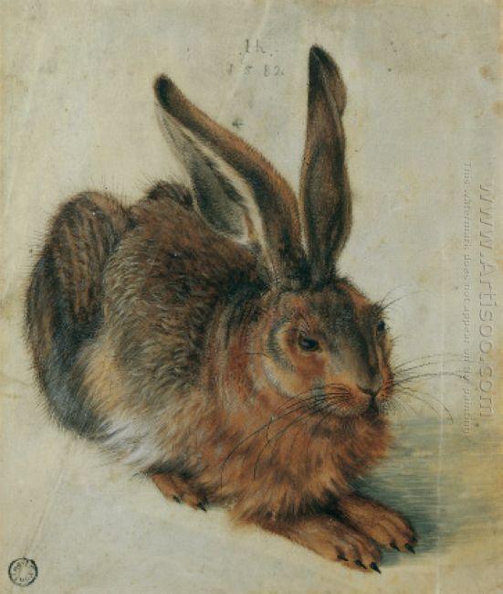 hare 1528