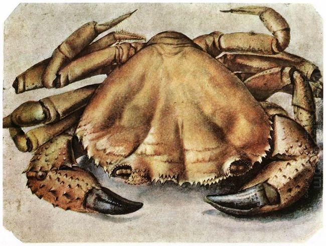 lobster 1495 1