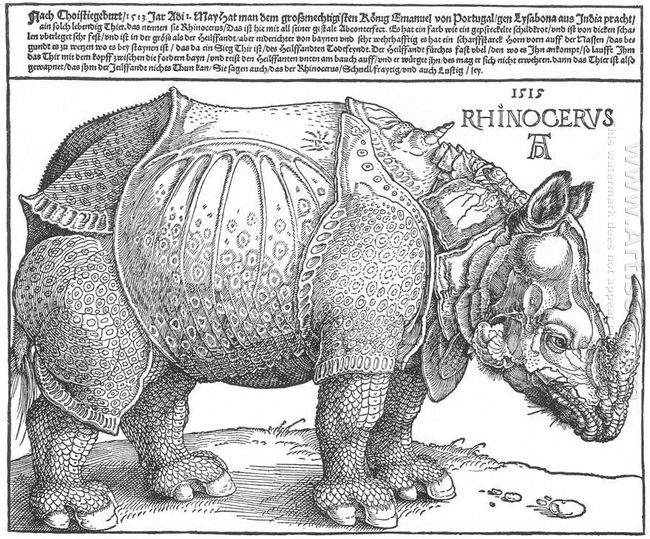 rhinoceros 1515