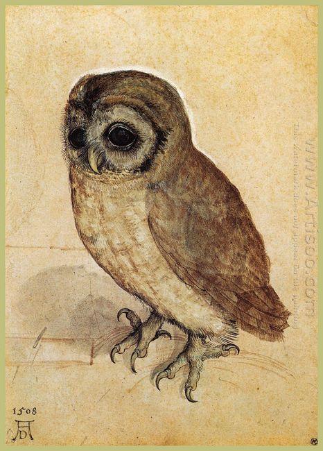 the little owl 1506