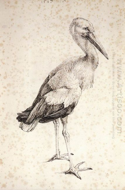 the stork 1515