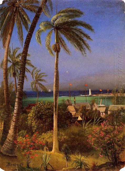 bahamian view