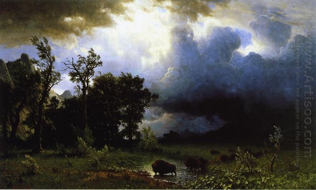 buffalo trail the impending storm 1869