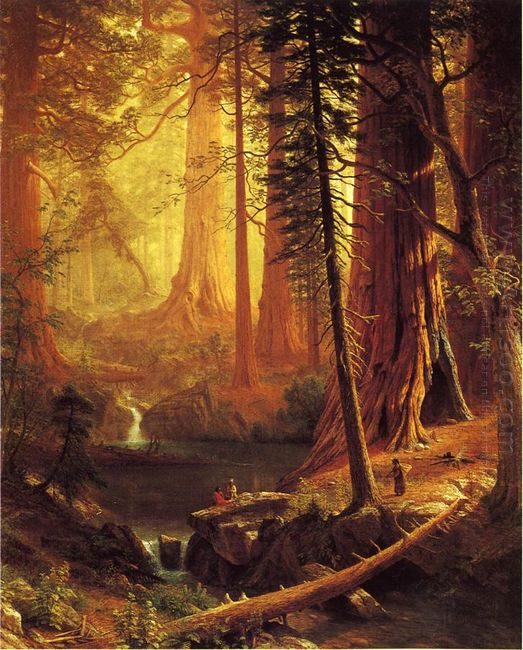 giant redwood trees of california 1874