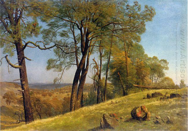 landscape rockland county california