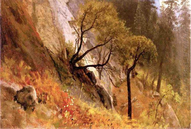 landscape study yosemite california