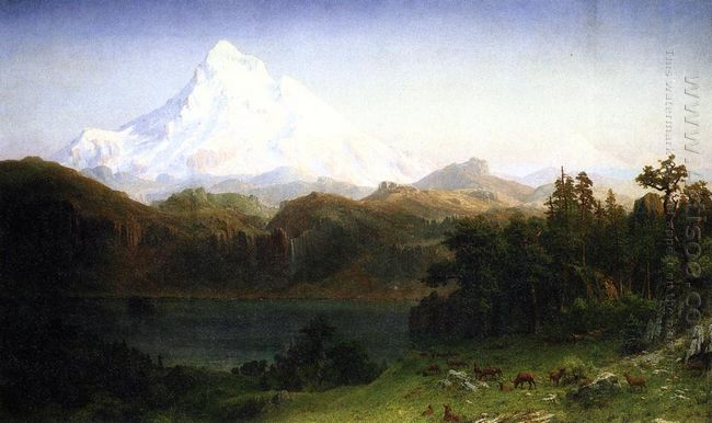 mount hood oregon 1865 1