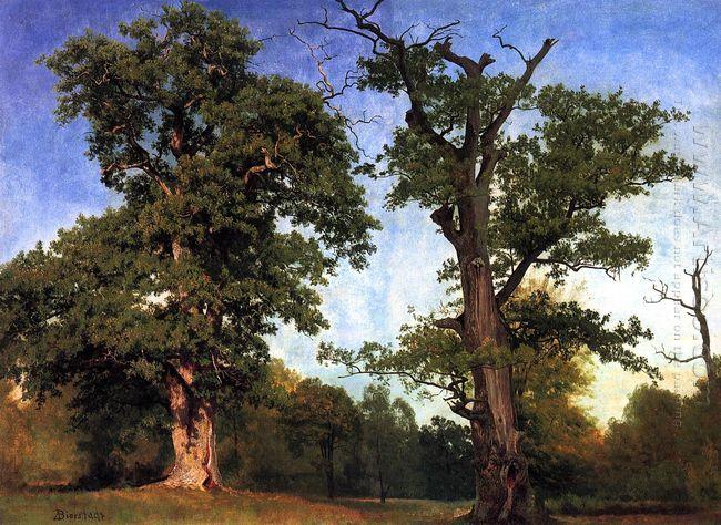 pioneers of the woods 1858