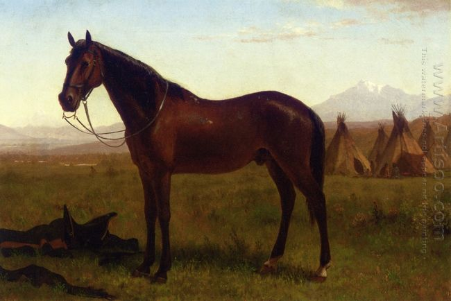 portrait of a horse 1869