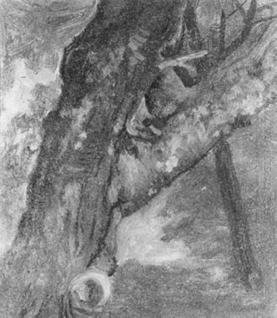 study of a tree 1864