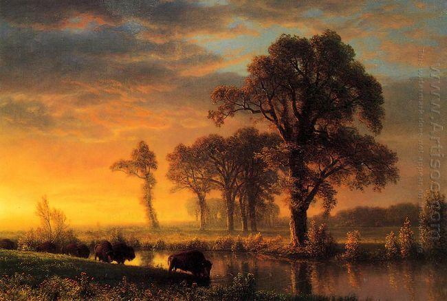 western kansas 1875