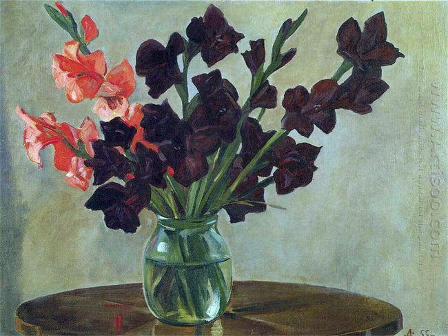 black gladiolus 1955
