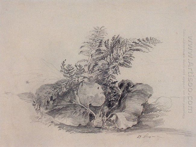 fern leaves and burdock 1854