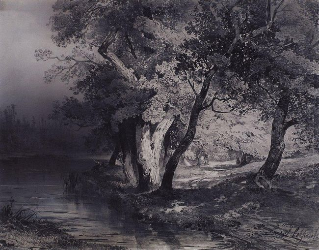 forest near the lake illuminated by the sun 1856