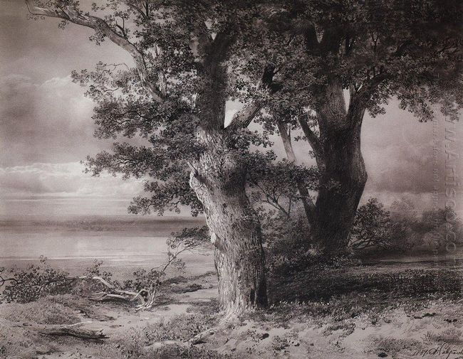 oaks on the shore 1867